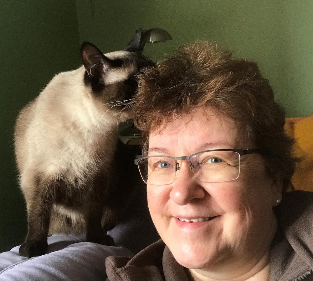 Telemedizin Katzen Portrait mit Katze